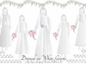 Tznius Bridal Gowns