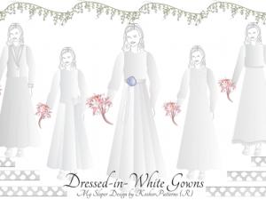 Tznius Bridal Gowns